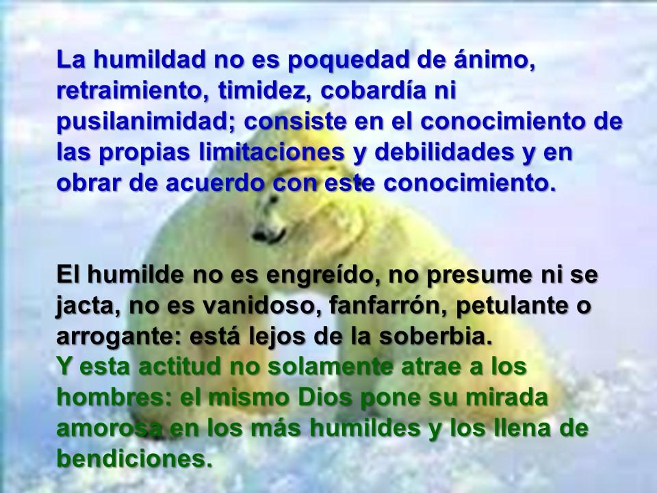 Humildad 1